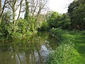 Chesterfield Canal. - geograph.org.uk - 426490.jpg
