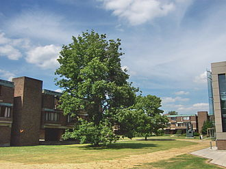 Churchill College, Cambridge - Churchill College