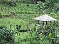 Ciburial, Cimenyan, Bandung, West Java, Indonesia - panoramio.jpg