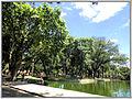 Cidade de Curitiba - Brazil by Augusto Janiski Junior - Flickr - AUGUSTO JANISKI JUNIOR (27).jpg