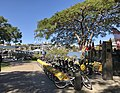 CityCycle in New Farm Park, Queensland.jpg
