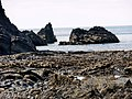 Clarach - panoramio (14).jpg