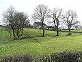 Cloghoge Townland - geograph.org.uk - 309315.jpg