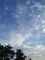 Clouds (8039659367).jpg