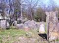 Cmentarz żydowski w Szydłowcu 01.JPG