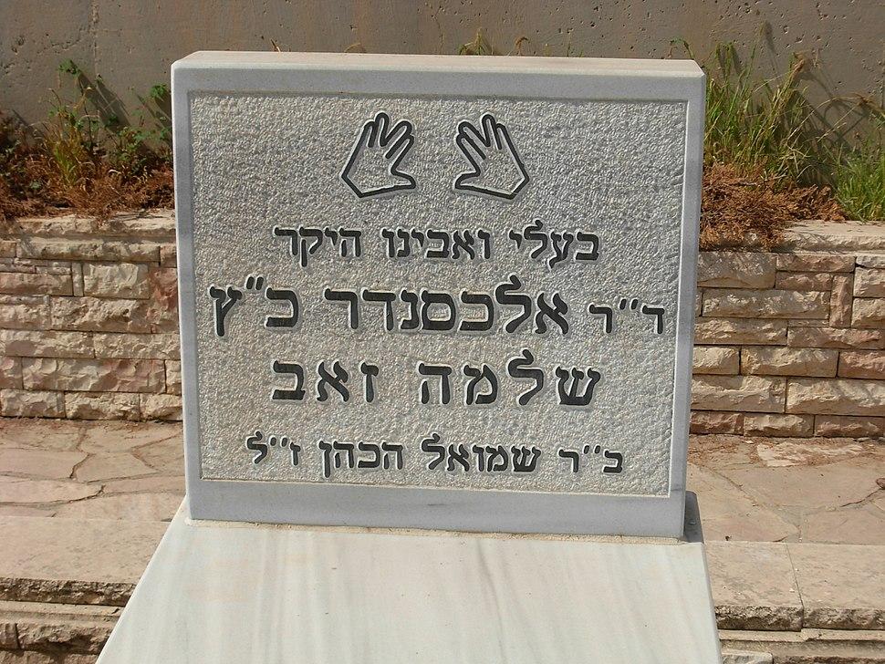 Cohen grave