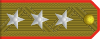 Colonel General rank insignia (North Korea).svg