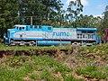 Comboio parado no pátio da Estação Ferroviária de Salto - Variante Boa Vista-Guaianã km 210 - panoramio (5).jpg