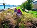 Cone Flower Cluster - panoramio.jpg