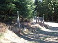 Corner of deer fence - geograph.org.uk - 418574.jpg