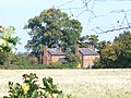 Cottages by Grove Heath Lane - geograph.org.uk - 1001876.jpg
