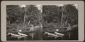 Couple in a canoe, from Robert N. Dennis collection of stereoscopic views.png