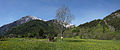 Courmayeur - meadow and mountains 2.jpg