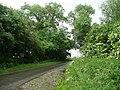 Cowdale Lane - geograph.org.uk - 857559.jpg