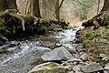 Creek (204174563).jpeg