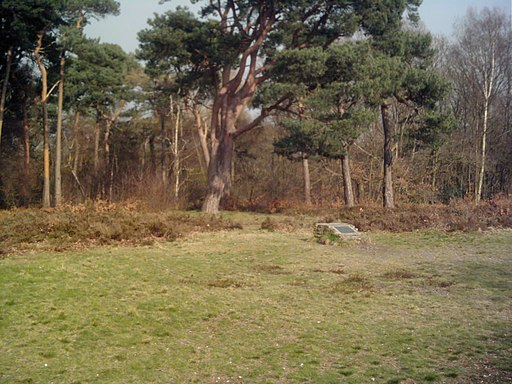 Croham Hurst Round Barrow (Marker Stone)
