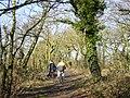 Cronton Lane - geograph.org.uk - 113205.jpg