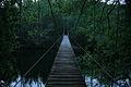 Cruce de ríos (4617414151).jpg