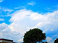 Cumulonimbus Incus - panoramio (6).jpg
