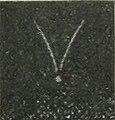 Curie - Traité de radioactivité, 1910, tome 2 page 0557 pl IV C crop.jpg