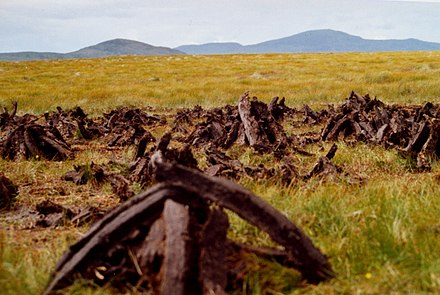 Cut turf between Carndonagh and Redcastle. Cutting the peat on the side of Lough Fad - geograph.org.uk - 51748.jpg
