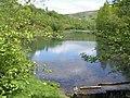 Cwmtillery Ponds - geograph.org.uk - 815233.jpg