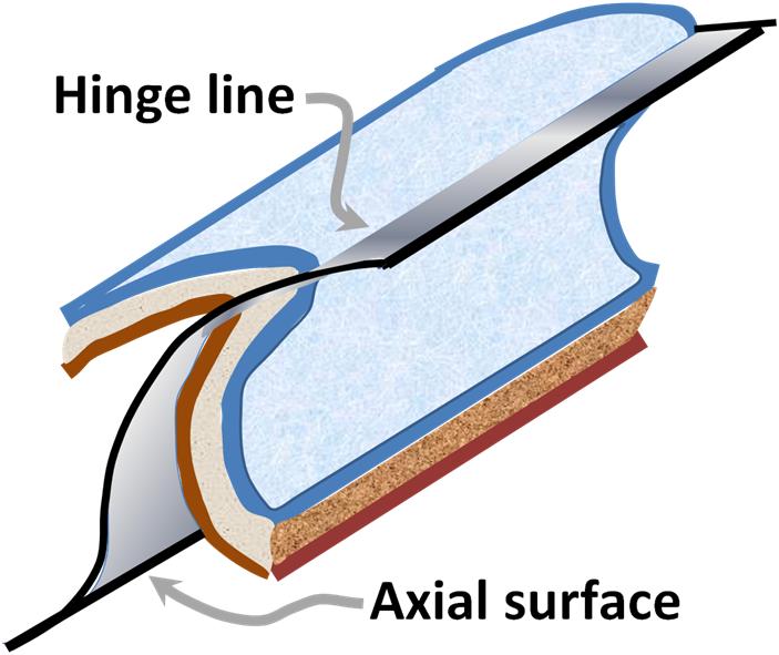 Cylindrical fold