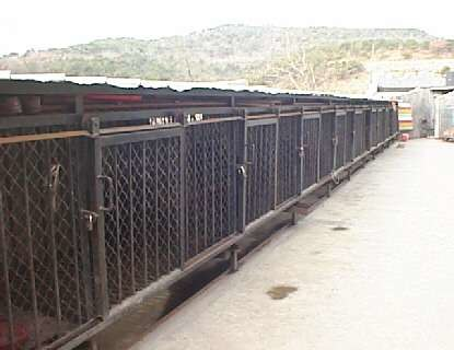 Dalian zoo bear cages, 1997