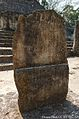 Damaged Maya Stela at Calakmul Mexico 02.JPG
