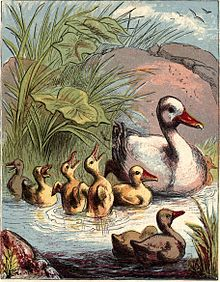 Dame Duck's lecture pg 7.jpg
