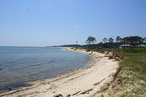 Dauphin Island, Alabama - View of the southeastern shore of the island.