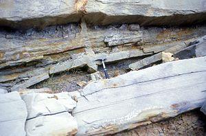 Lowe sequence - Image: De watering dike, Cozy Dell Fm