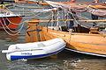 De hengst DE JONGE JOSEPH bij Sail Amsterdam 2015 (02).JPG
