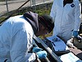 December 2009, Scientists process post dredging sediment cores (5201419789).jpg