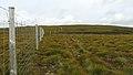Deer Fence (An Sgòr Dubh) on Mar Lodge Estate (06AUG17) (4).jpg