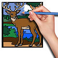 Deer for coloring - color pencil version.jpeg