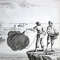 Demonstration of a throwing net (cropped).jpg