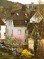Der Frühling kommt nach Siegen - 02.04.2011 - panoramio.jpg