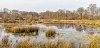 Diakonievene. Natuurgebied van It Fryske Gea 002.jpg