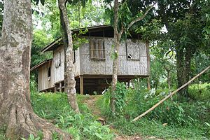 Kabugao, Apayao - A typical home in Barangay Dibagat