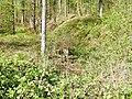 """Die 86 km langen """"Eppinger Linien"""" (Schanzgraben) wurden ab 1694 errichtet gegen die ständigen Einfälle französischer Truppen in Süddeutschland. - panoramio.jpg"""