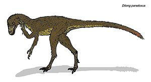 Restoration of the small coelurosaur Dilong pa...