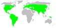 Distribution.titanoecidae.1.png