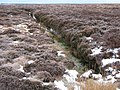 Disused peat cutting - geograph.org.uk - 1724414.jpg