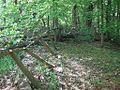 Dixon Cemetery Helena AR 015.jpg