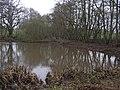 Dogkennel Pool - geograph.org.uk - 299930.jpg