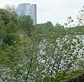 Donau mit Klotzbau - panoramio.jpg