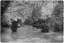 two columns of Marines wade through waist-deep water in a jungle