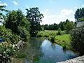 Douvrend, Seine-Maritime, France, rivière, amont.JPG