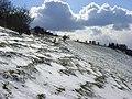 Downland, Inkpen - geograph.org.uk - 763926.jpg